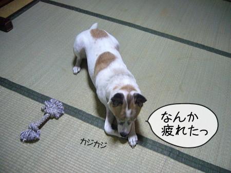2008-09-14-5.jpg