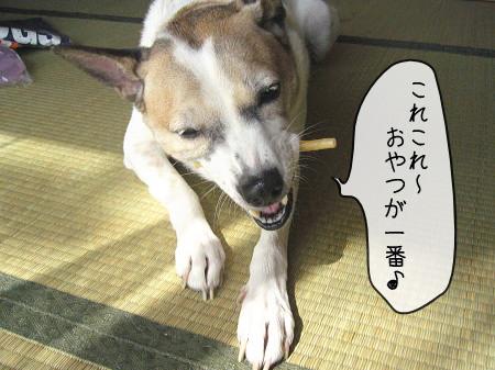 2008-09-23-8.jpg