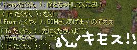 20060131104755.jpg