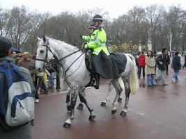 バッキンガム宮殿の騎馬警察