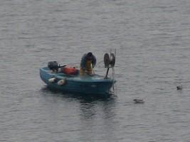 ピランの漁船