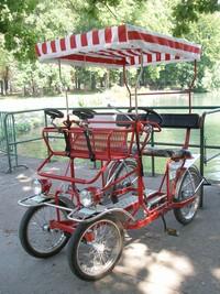 テットドール公園の自転車
