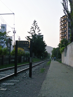 P1000110.jpg