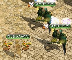 09.12.11引導