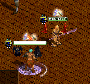 100702姫武器