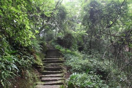 天台山15