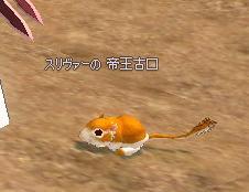 mabinogi_2009_01_05_005.jpg