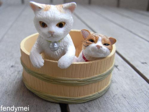 cat090701-1.jpg