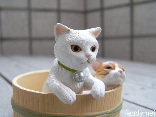 cat090701-2.jpg