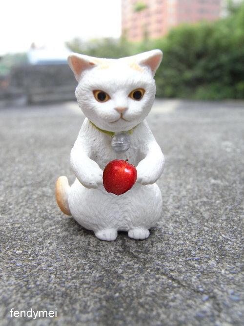 cat090701-4.jpg