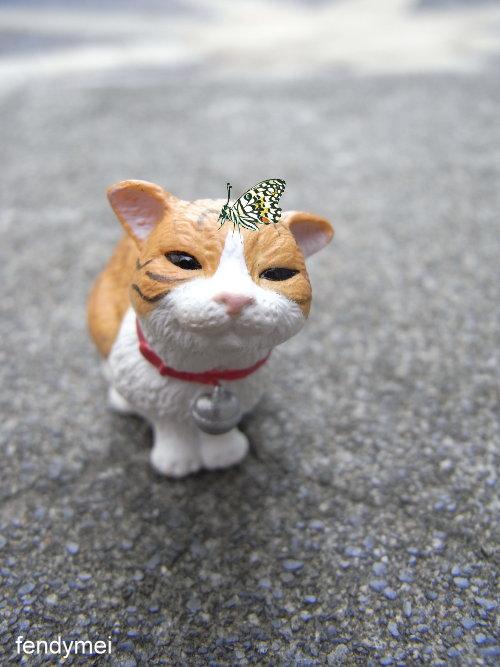 cat090701-5.jpg
