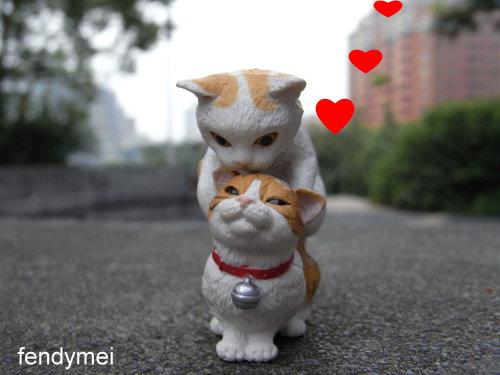 cat090701-7.jpg