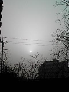 020_20100322000653.jpg