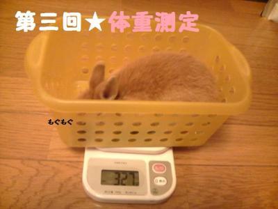 第三回体重測定