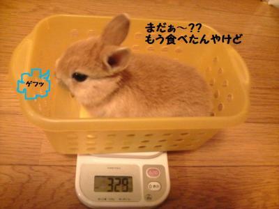 第三回体重測定2