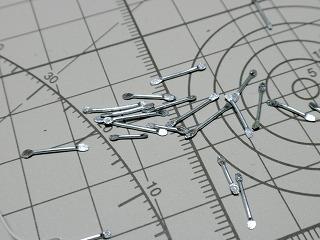 s1-RCM_II_20090712_3636.jpg