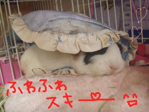 huwasuki1.jpg