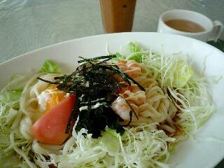 ランチ(サラダうどん)