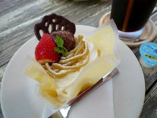 ドッグラン ドッグカフェ 藤沢 トイプードル パピヨン