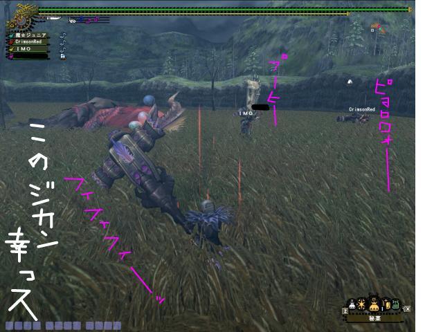 snap_momedanmajyu_200971134422.jpg