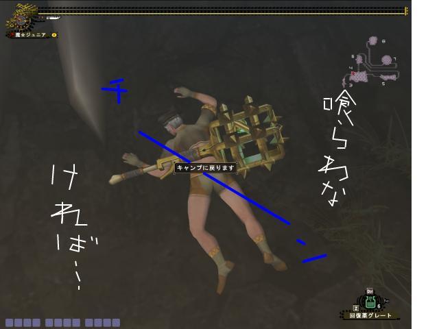 snap_momedanmajyu_200971141529.jpg