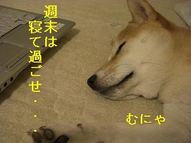 寝て過ごせ