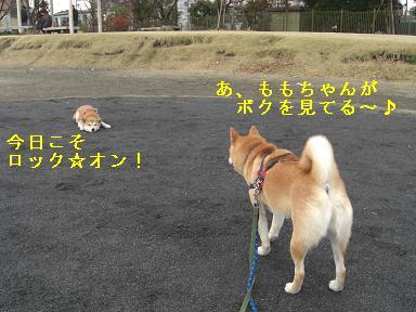 ロック☆オン