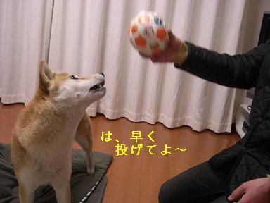 投げてよ~