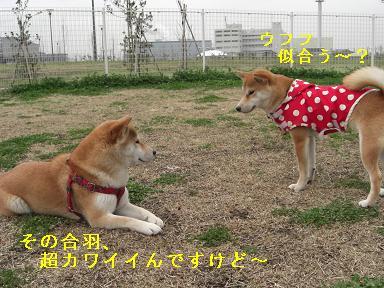 似合う~?