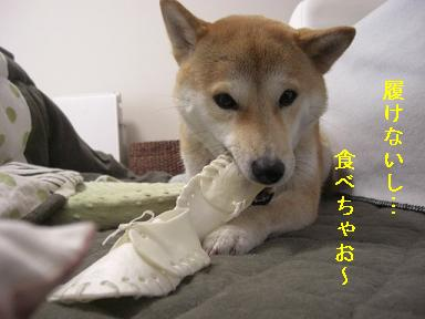 食べちゃお~