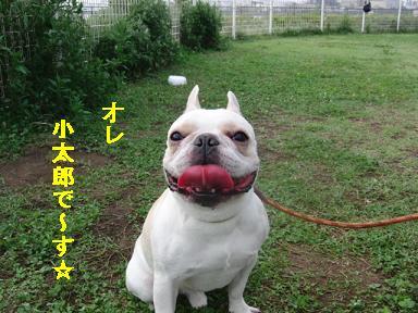 小太郎く~ん