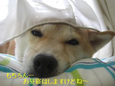 ママもしま~す☆