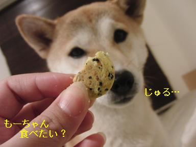 コレ好き~?