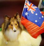 オーストラリア生まれのMoMo