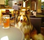 暑い時は、ビールよね~