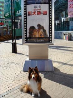 映画「2006 ラッシー」