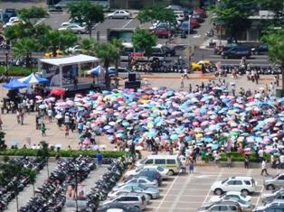 傘がいっぱい