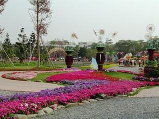 昨年の花市
