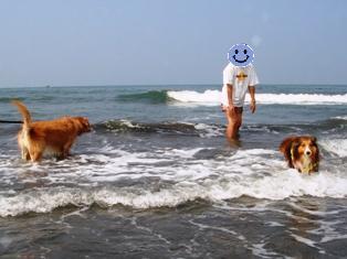 泳ぐのヤダぁ~