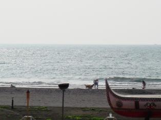 海を眺めてのランチ
