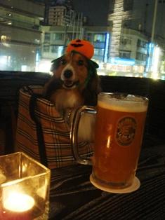 地ビールレストラン店内