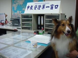 早く書類お願いね!