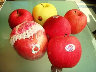 日本のリンゴ