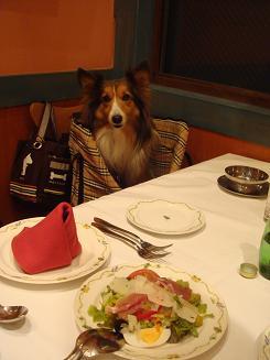 ディナー♪