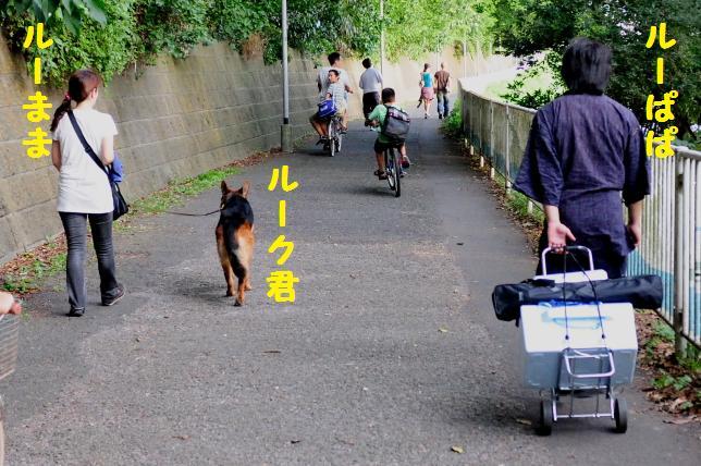 江戸川花火大会 004