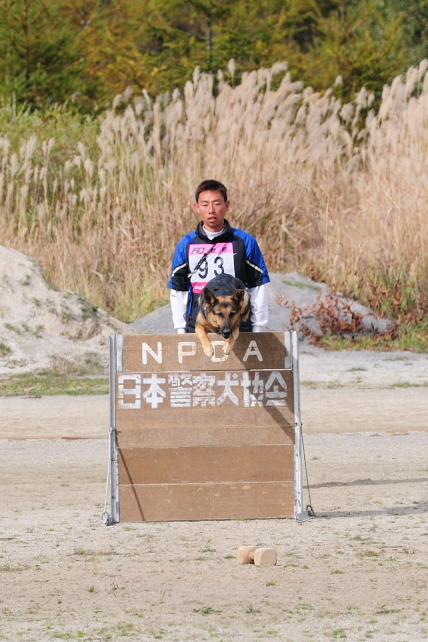 2010 訓練チャンピオン 129