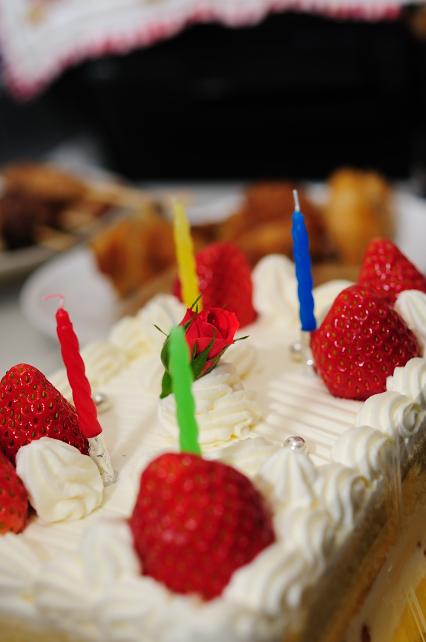 クルミ、4歳の誕生日 284