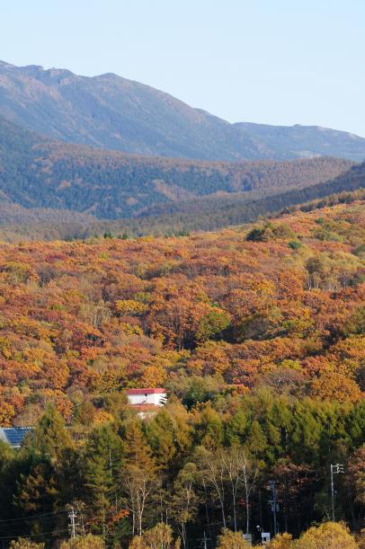 2011 霧ヶ峰 030