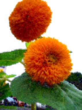 20080830eternalsunshine.jpg