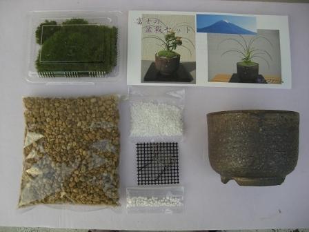富士の盆栽セット(茶)